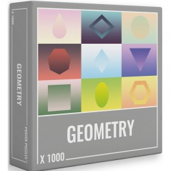 Puzzle Geometry 1000
